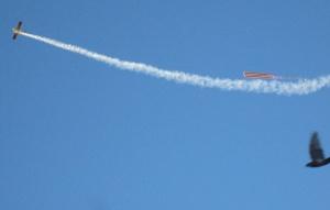Самолет, флаг, дым, птица